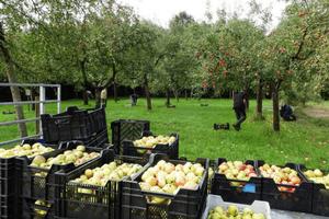 Weldadig Oord Fruithof Frederiksoord