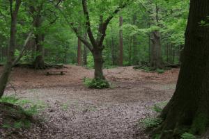Sterrebosch Weldadig Oord Frederiksoord