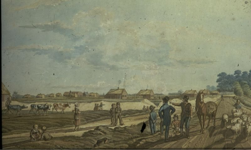 Geschiedenis Weldadig Oord kolonieakker